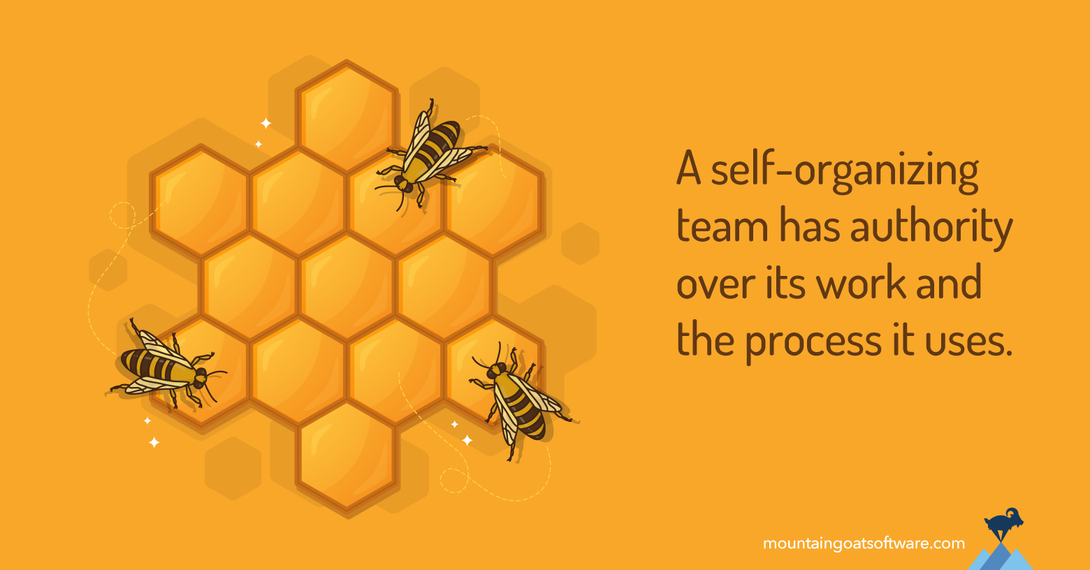 Beehive illustrating self-organizing teams.