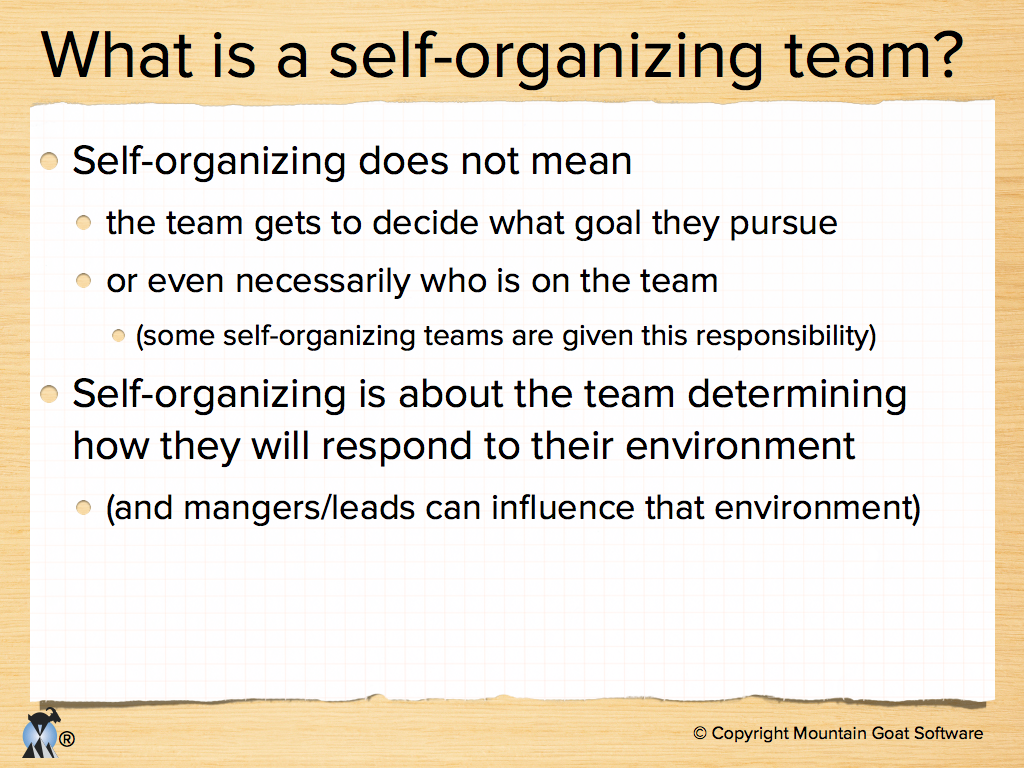 agile development presentations for leading a self organizing team