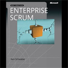 Enterprise and Scrum